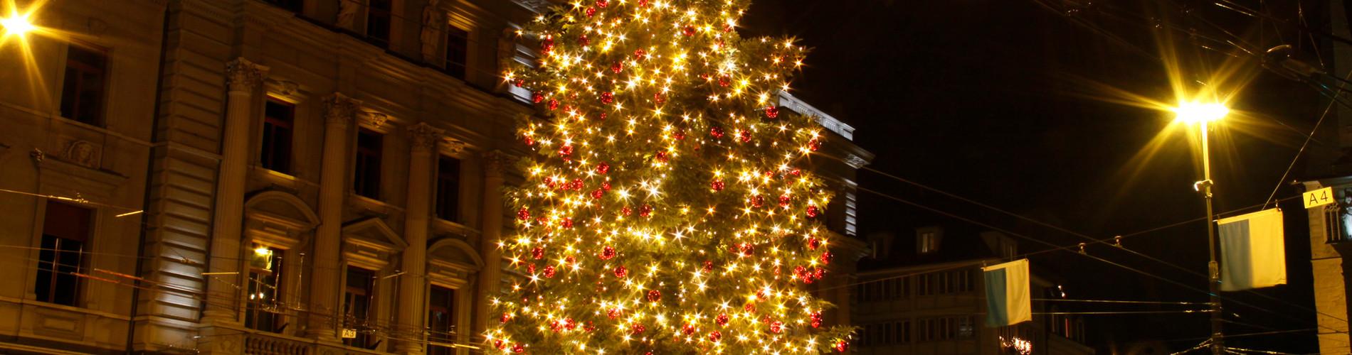 sch nster weihnachtsbaum weihnachten luzern